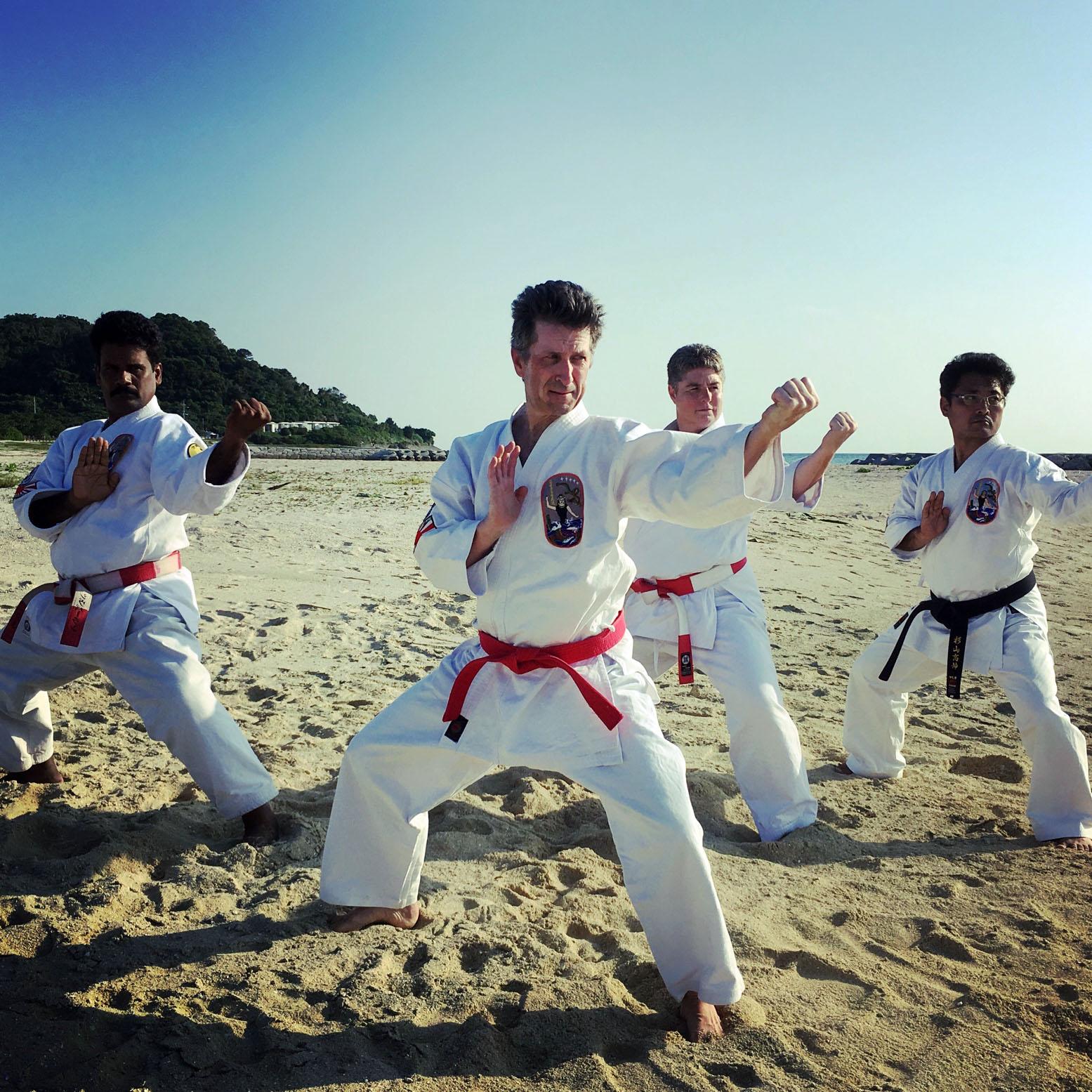 Okinawa Isshinryu Karate Kobudo Association (OIKKA)