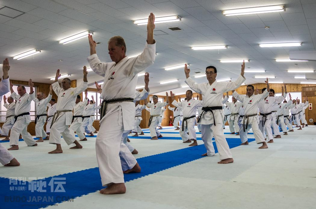 Shotokan Karate: It was 30 years ago today | BUDO JAPAN