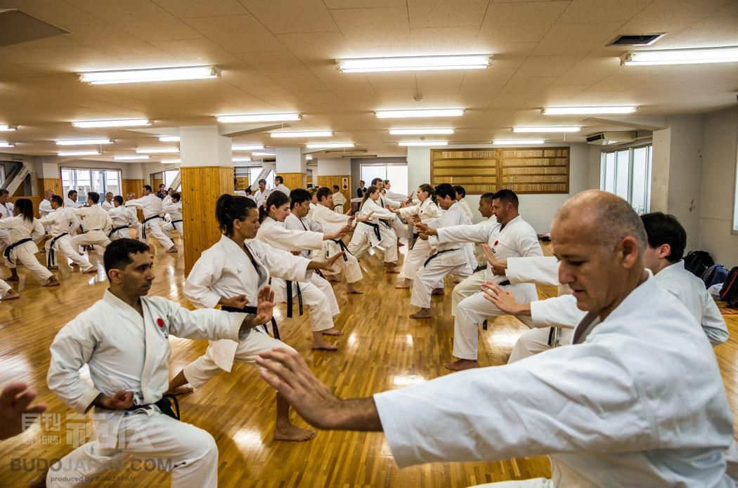 Shotokan Karate: It was 30 years ago today