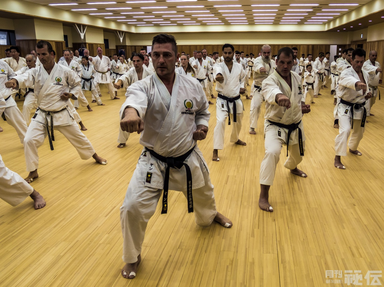 An afternoon of Shotokan:  Japan Karate Shoto Federation's International Seminar