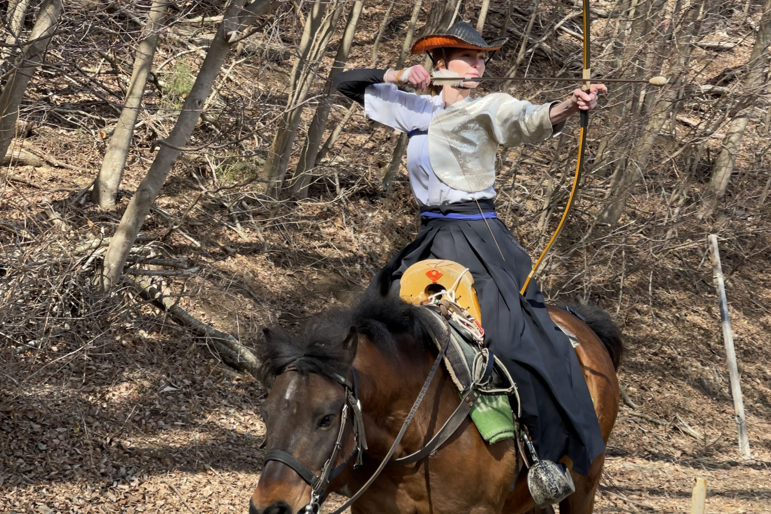 Sports Yabusame: Blending traditional equine culture with sport.