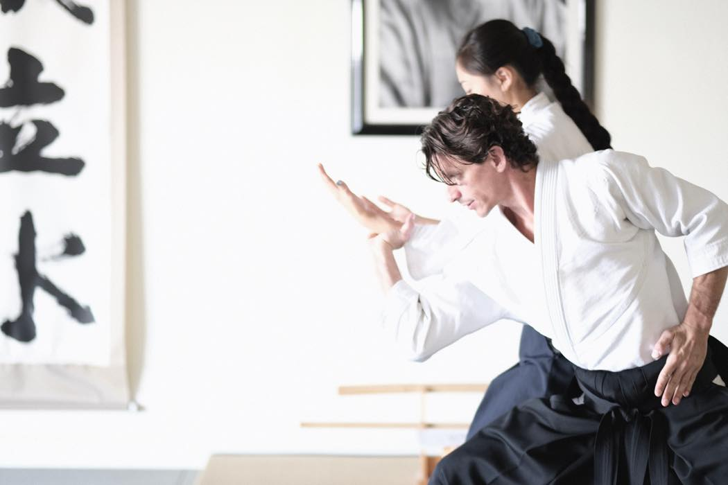 """Pioneering the Future of Budo – Aikido Projects Launching from North America – """"Three Arrows"""""""